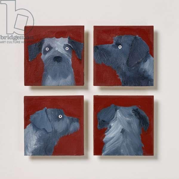 Border Terrier, 2020 (oil on canvas)