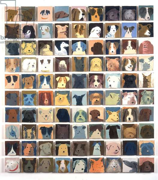 90 Dogs, 2010 (oil on board)