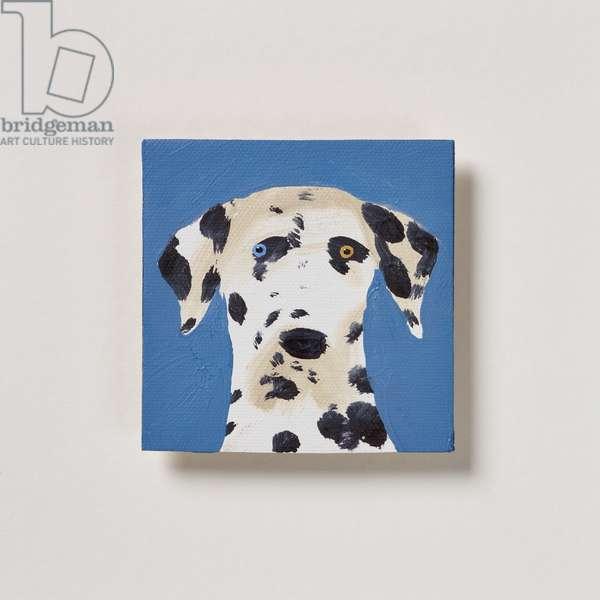 Dalmatian, 2020 (oil on canvas)
