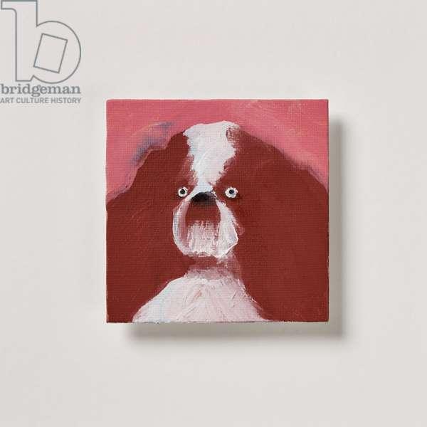 Spaniel, 2020 (oil on canvas)