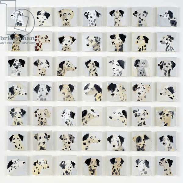 49 Dalmatians, 2015 (oil on canvas)