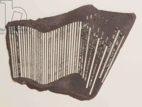 Perimeter Fence, 2010 (wood engraving print on paper collaged on slate)