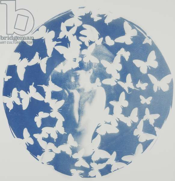 Swarm, 2014, (cyanotype on paper)