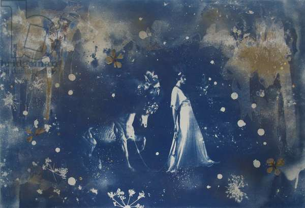 Parade, 2015, (Cyanotype, ink, watercolour, spray paint, pressed flowers and gold leaf on paper)