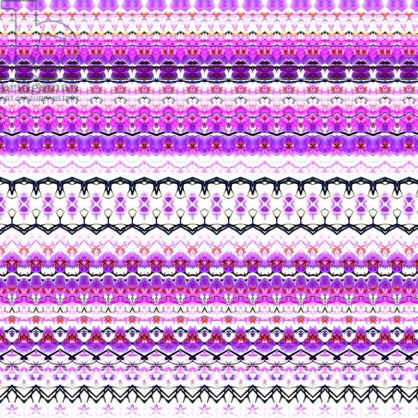 Orchid Stripe