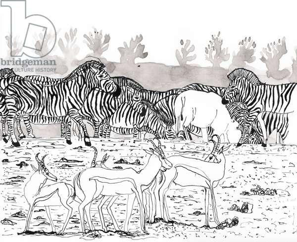Safari 3, 2018, Ink and Watercolour