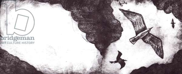 The Seagull's Tale, 2012, Dry-point etching
