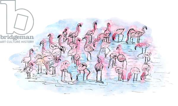 Flamingos 2, 2018, Ink and Watercolour