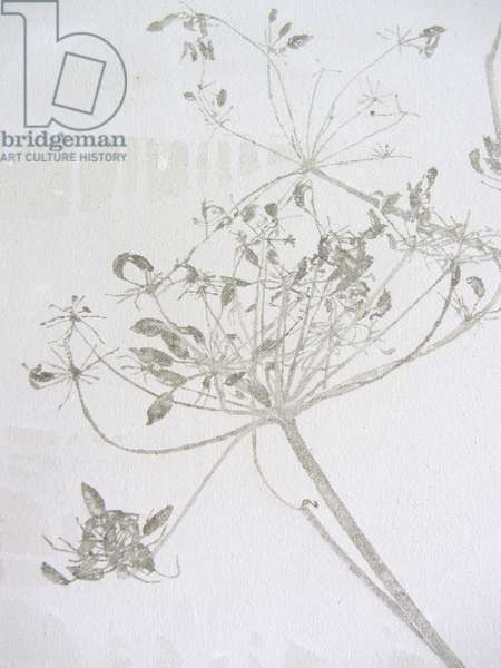 Queen Anne's Lace - detail, 2013 (oil and gesso on canvas)