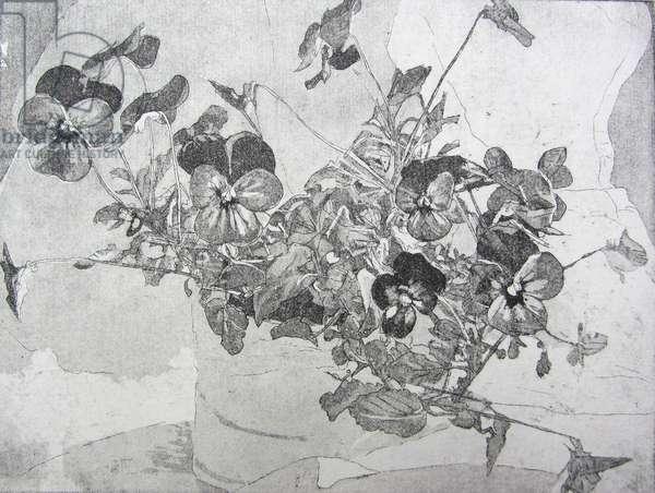 Viola, 2014 (etching)