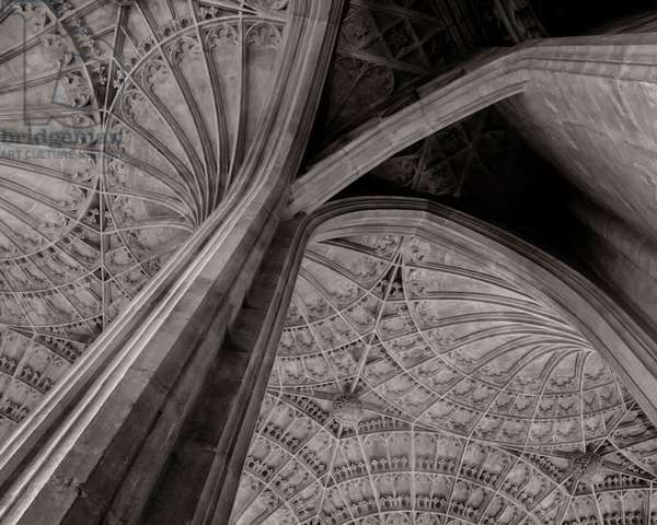 Vaulted Ceiling, 2020, (digital image)
