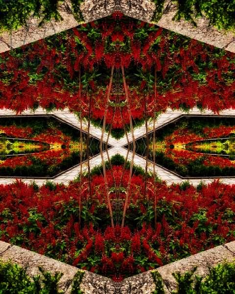 Red Flower Bed, 2015 (digital image)