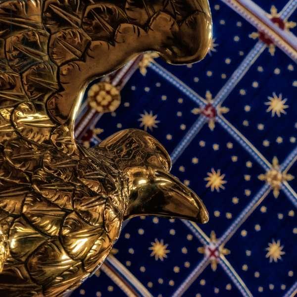Eagle Soars, 2020 (digital image)