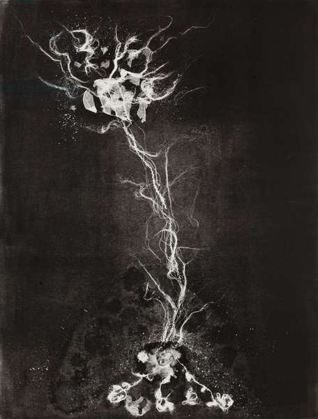 Fragility 3, 2009, (monotype)
