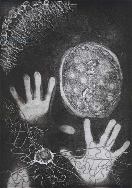 Shadow Puppet 7, 2007, (etching and aquatint)