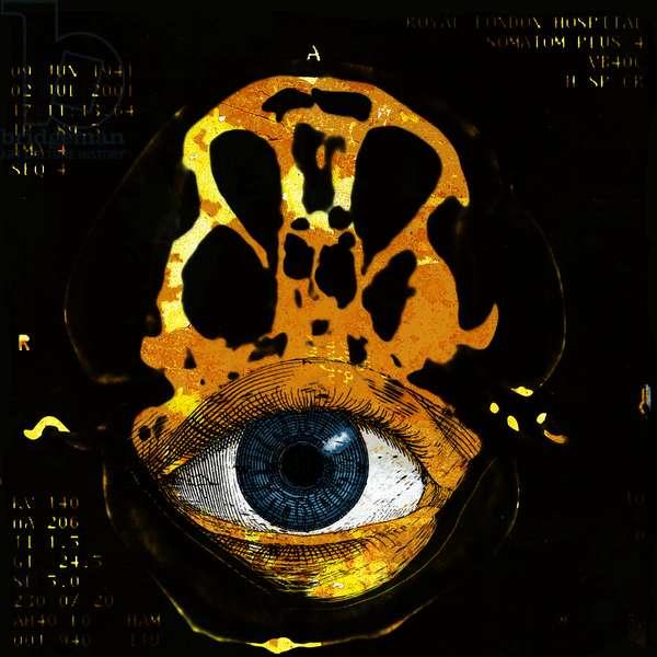 Cogito Ergo Sum 3.18, 2006, (archival digital pigment print)