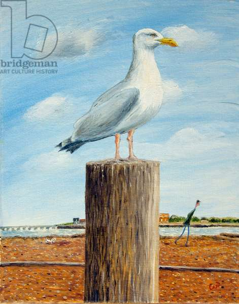 Boss Seagull, 2016, (oil on canvas)