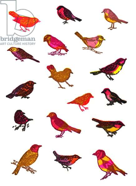 little brown birds, 2016, screen print