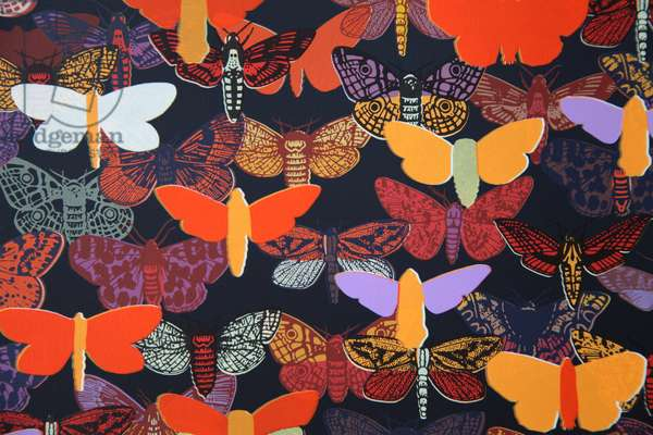 Moths (detail), 2013, (screen print)