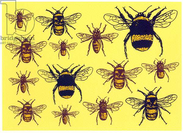 Bees, 2013, (screen print)