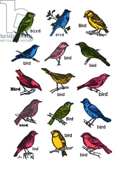 Birds-with text,small, 2013, (screen print)
