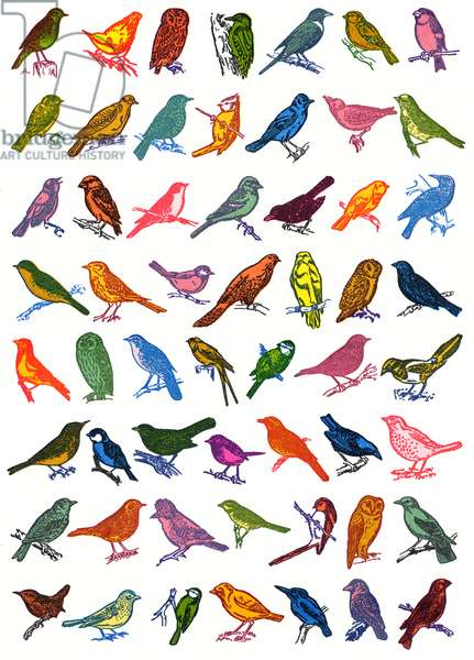 Birds, 2006, (screen print)