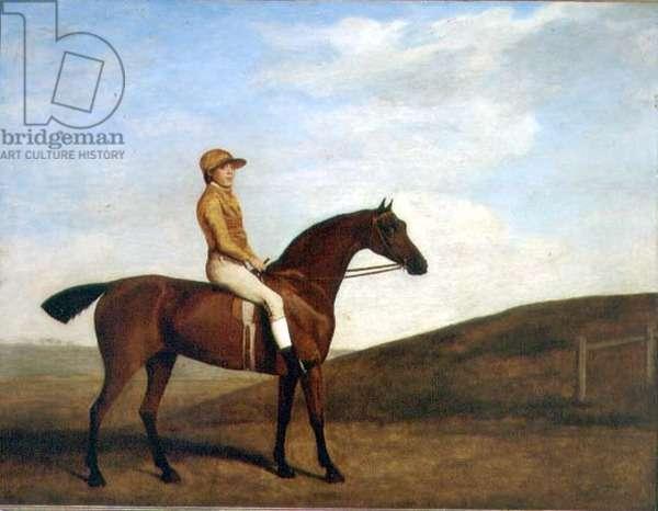 'Rosaletta' (oil on canvas)