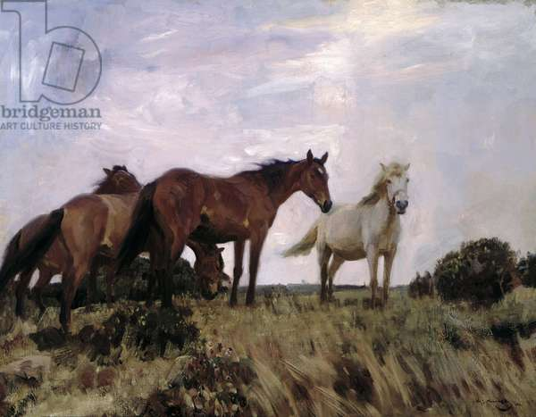 On the Moors, 1912 (oil on canvas)