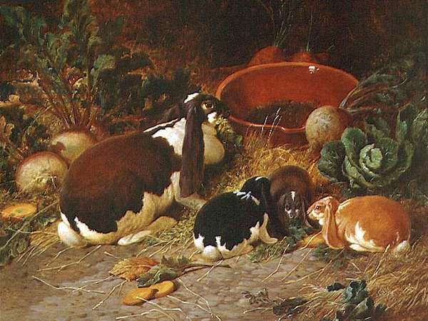 Fancy Rabbits, a Doe with her Young, 1863 (oil on canvas)