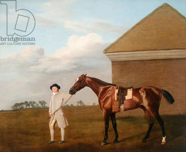 'Firetail' with his Trainer by the Rubbing-down House on Newmarket Heath, 1773 (oil on canvas)