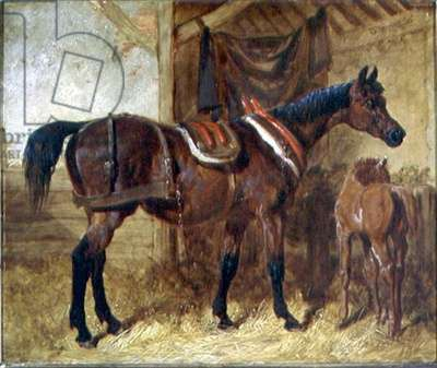An Old Mare and Foal in a Stable, 1854 (oil on canvas)