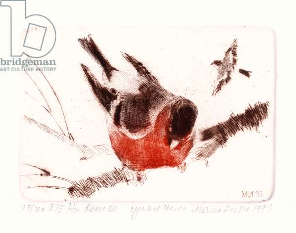 Bird on Twig, 1999 (drypoint)