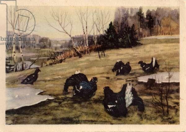 Spring, A Flock of Black Grouse, 1954 (litho)