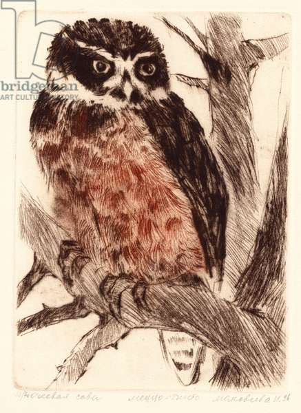 Spectacled Owl (Pulsatrix), 1996 (drypoint)