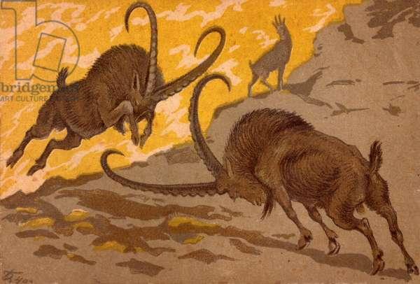 Goats, 1940 (lithograph)