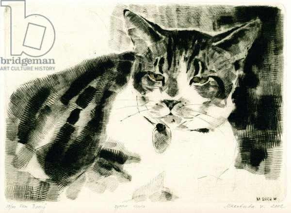 Cat, 2002 (drypoint)