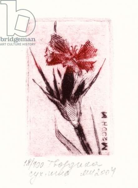 Carnation, 2004 (drypoint)