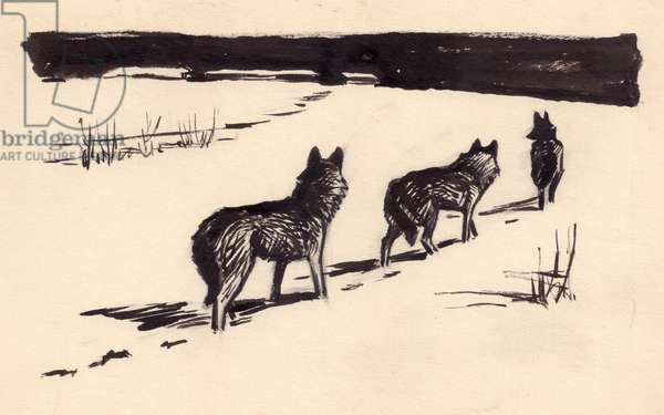Pack of Wolves, 1956 (indian ink on paper)