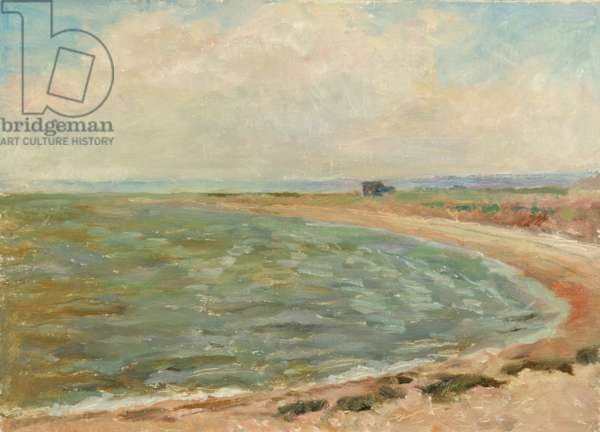 View of the Baltic Sea, 1950s (oil on canvas)