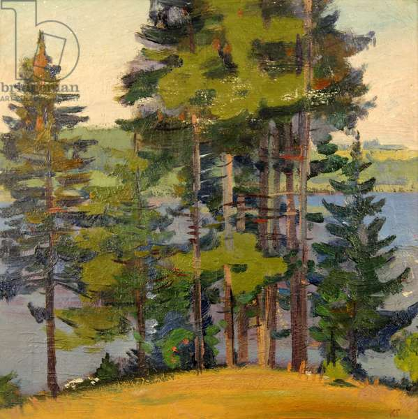 Landscape with Pines, 1964 (oil on card)
