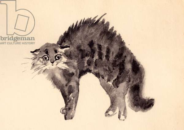Cat Arching Its Back, 1956 (w/c on paper)