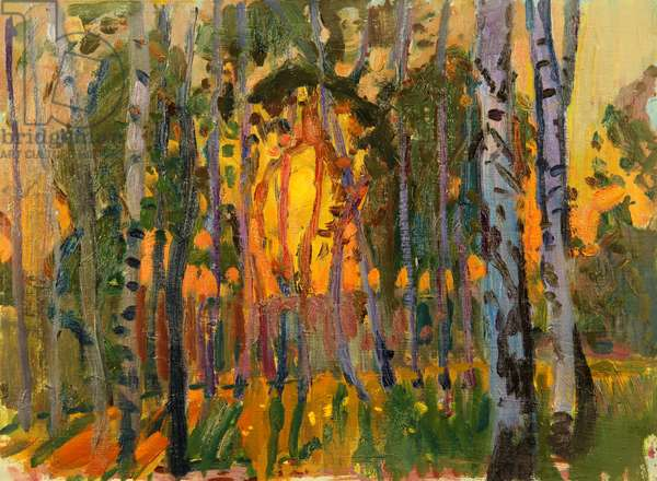 Sunset behind the Birch Trees, 1962 (oil on card)