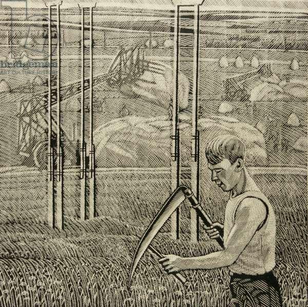 Harvesting, 1983 (linocut)