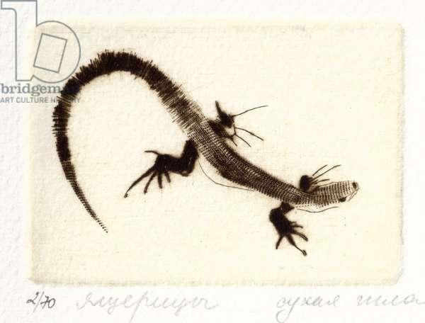 Lizard (Lacertilia), 2000 (drypoint)