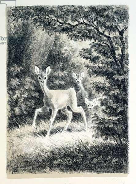 Deer, 1946 (lithograph)