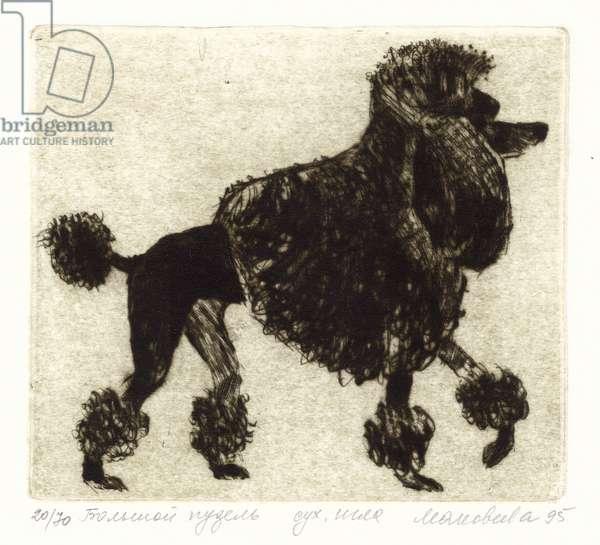 Standard Poodle, 1995 (drypoint)