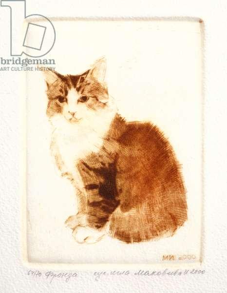Cat, 2000 (drypoint)
