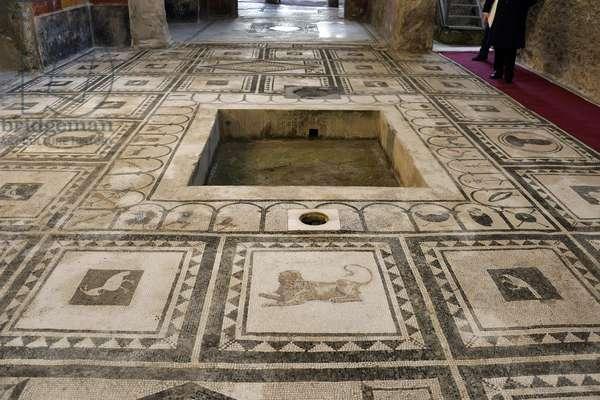 26/12/2015 Pompei restauration de la maison de Paquius Proculus (casa di Paquio proculo) Italie Photo Frassineti ©AGF/Leemage