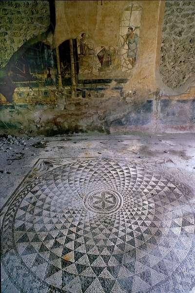 Fouille de Pompei: la maison des Amours Dores. photo Frassineti ©AGF/Leemage