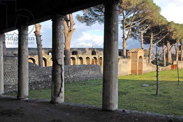 Fouille de Pompei: la palestre. photo Frassineti ©AGF/Leemage